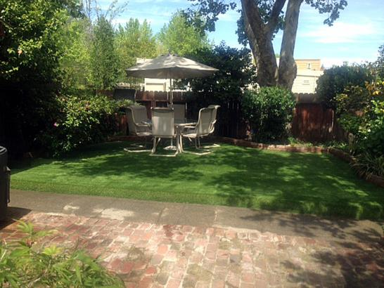 Artificial Grass Photos: Synthetic Turf Supplier Montclair, California Backyard Playground, Backyard Landscape Ideas