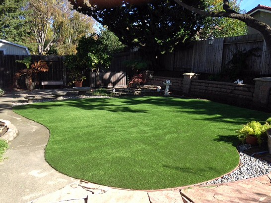 Artificial Grass Photos: Synthetic Turf Supplier Oak Park, California Lawn And Landscape, Backyard Landscaping