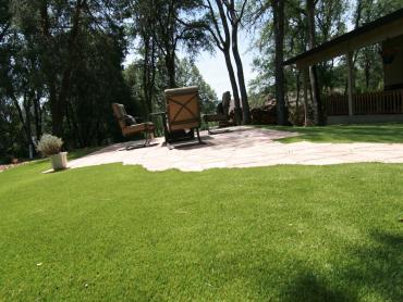 Artificial Grass Photos: Turf Grass Oasis, California Home And Garden, Backyard