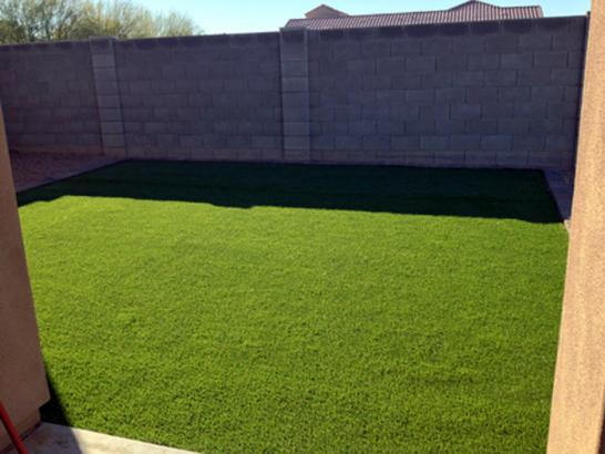 Artificial Grass Photos: Turf Grass Vernon, California Landscape Rock, Backyard Landscaping Ideas