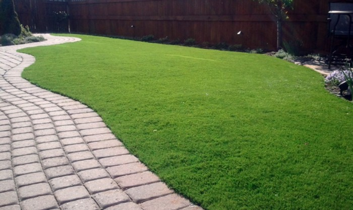 Pet Grass, Artificial Grass For Dogs in Vista